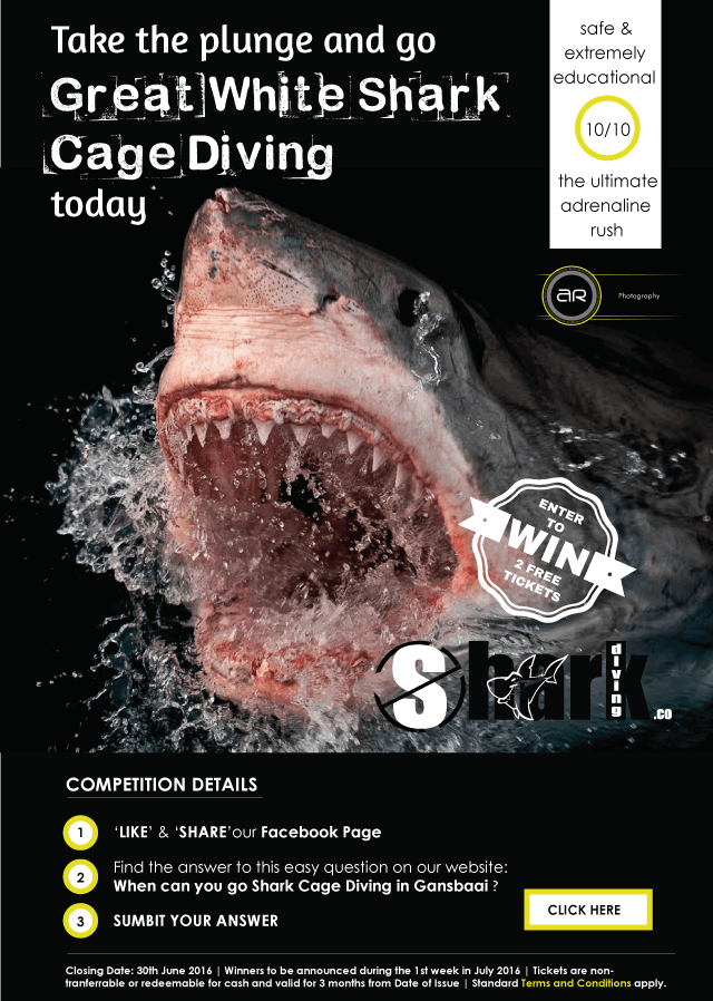 Win 2 Free Shark Cage Diving Tickets