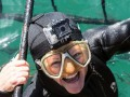Shark Cage Dive Gansbaai Charter Adult Day Tour Helicopter Transfer