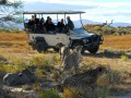 Shark & Safari TRF 2 Day Tour Incl. Transfer